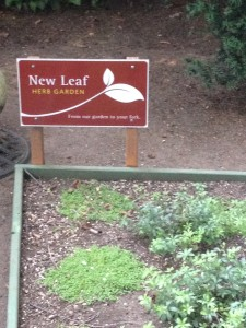 Another reason I love this wedding venue - New Leaf Herb Garden - from their garden to your plate!