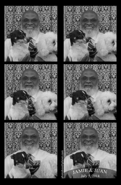Dogs in photo booth.  Photo booth rental Newport RI wedding.
